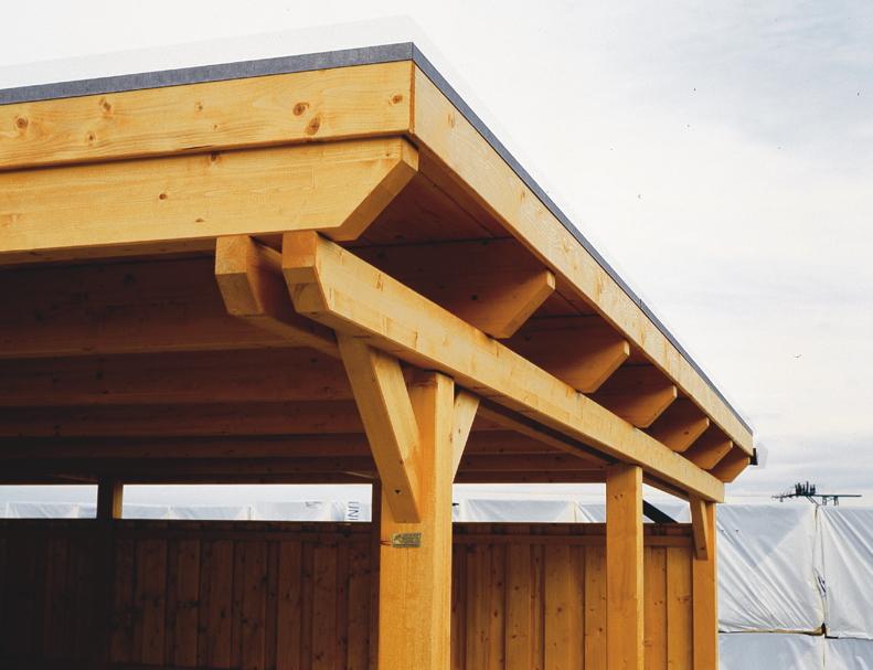 Holz carport bausatz skanholz emsland flachdach for Carport detail